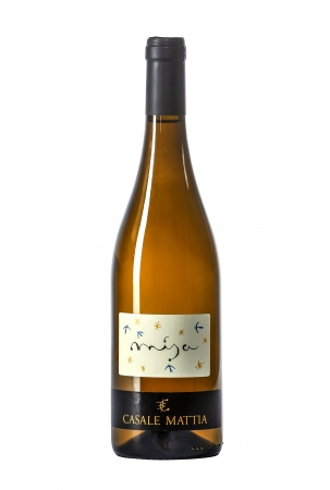Misa Vini bianchi